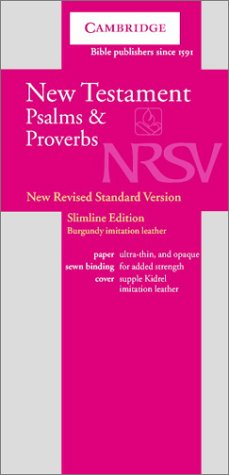 NRSV New Testament with Psalms and Proverbs Burgundy Imitation NRNT1: Baker Publishing Group
