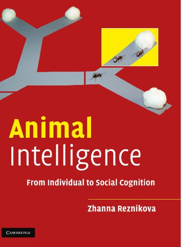 9780521532020: Animal Intelligence: From Individual to Social Cognition