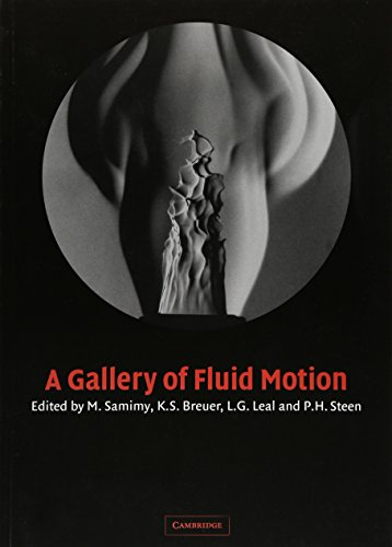 9780521535007: A Gallery of Fluid Motion