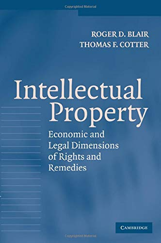 9780521540674: Intellectual Property: Economic and Legal Dimensions of Rights and Remedies