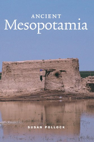 9780521573344: Ancient Mesopotamia Hardback (Case Studies in Early Societies)