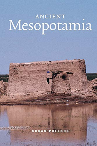 9780521575683: Ancient Mesopotamia Paperback (Case Studies in Early Societies)