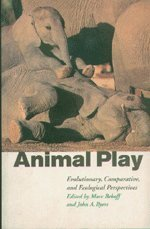 9780521586566: Animal Play: Evolutionary, Comparative and Ecological Perspectives