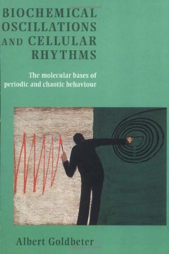 9780521599467: Biochemical Oscillations and Cellular Rhythms: The Molecular Bases of Periodic and Chaotic Behaviour