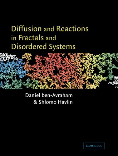 9780521617208: Diffusion and Reactions in Fractals and Disordered Systems
