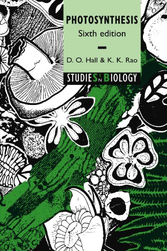 9780521644976: Photosynthesis (Studies in Biology)