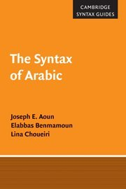 9780521650175: The Syntax of Arabic Hardback (Cambridge Syntax Guides)