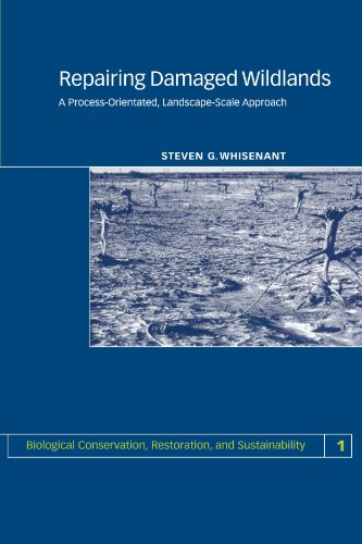9780521665407: Repairing Damaged Wildlands: A Process-Orientated, Landscape-Scale Approach (Biological Conservation, Restoration, and Sustainability)