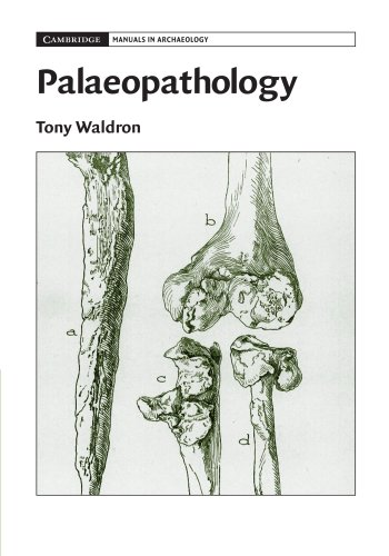 9780521678551: Palaeopathology (Cambridge Manuals in Archaeology)