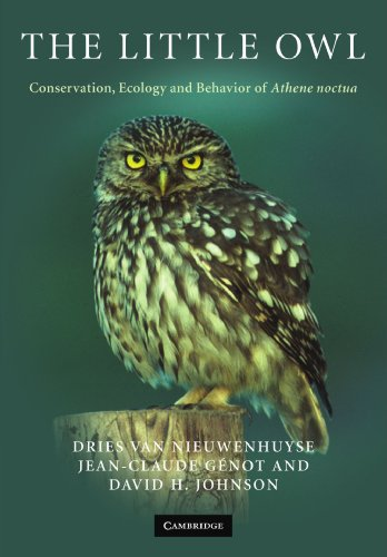 9780521714204: The Little Owl: Conservation, Ecology and Behavior of Athene Noctua
