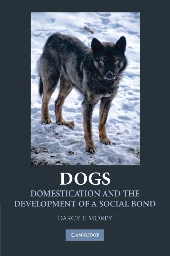 9780521757430: Dogs: Domestication and the Development of a Social Bond