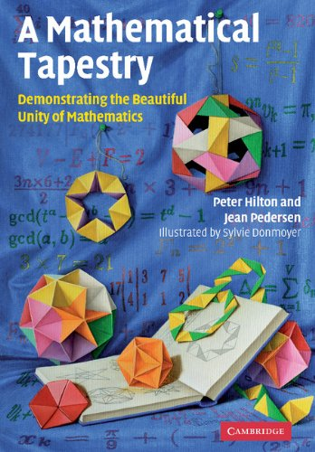 9780521764100: A Mathematical Tapestry: Demonstrating the Beautiful Unity of Mathematics