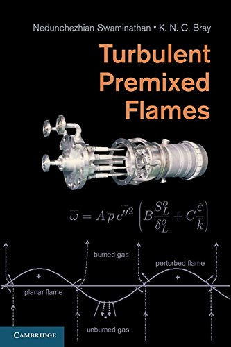 9780521769617: Turbulent Premixed Flames