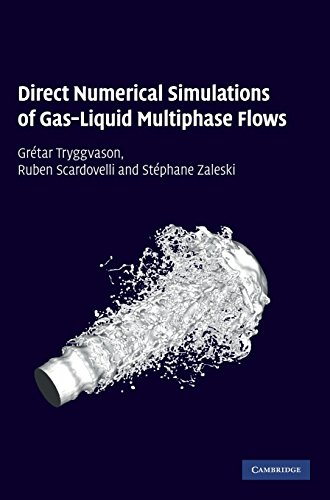 9780521782401: Direct Numerical Simulations of Gas-Liquid Multiphase Flows Hardback (Cambridge Monographs on Applied & Computational Mathematics)