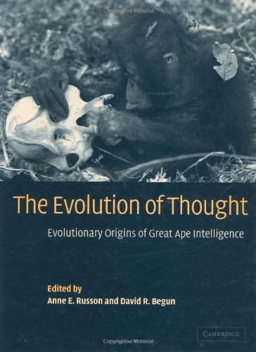 9780521783354: The Evolution of Thought: Evolutionary Origins of Great Ape Intelligence