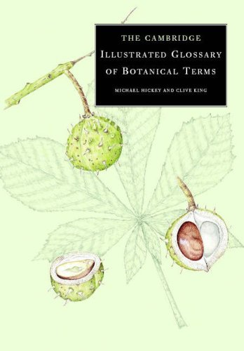 9780521790802: The Cambridge Illustrated Glossary of Botanical Terms