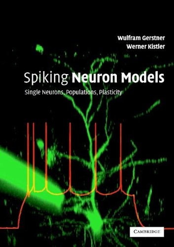 9780521813846: Spiking Neuron Models: Single Neurons, Populations, Plasticity