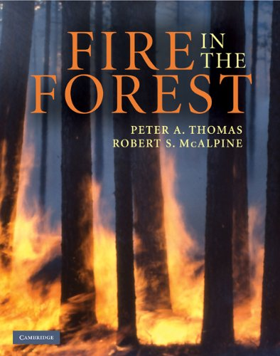 Fire in the Forest: Thomas, Peter A.