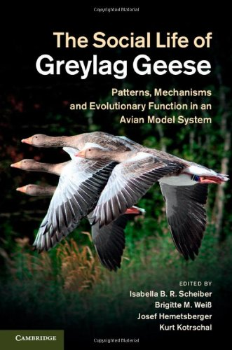 The Social Life of Greylag Geese: Patterns,