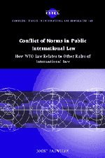 9780521824880: Conflict of Norms in Public International Law: How WTO Law Relates to other Rules of International Law (Cambridge Studies in International and Comparative Law)