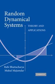 9780521825658: Random Dynamical Systems Hardback: Theory and Applications