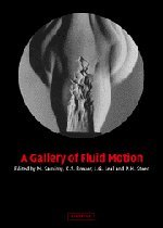 9780521827737: A Gallery of Fluid Motion Hardback