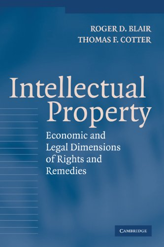 9780521833165: Intellectual Property: Economic and Legal Dimensions of Rights and Remedies