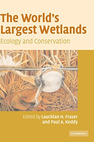 The Worlds Largest Wetlands: Ecology and Conservation