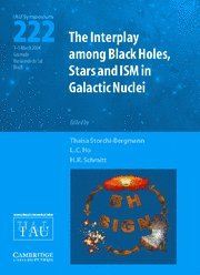 9780521848039: The Interplay among Black Holes, Stars and ISM in Galactic Nuclei (IAU S222) (Proceedings of the International Astronomical Union Symposia and Colloquia)