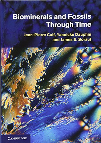 9780521874731: Biominerals and Fossils Through Time Hardback