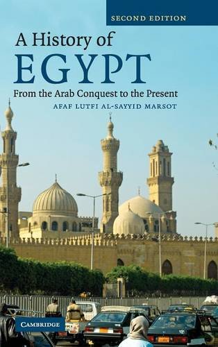 9780521877176: A History of Egypt: From the Arab Conquest to the Present