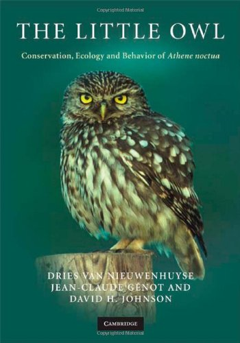 9780521886789: The Little Owl: Conservation, Ecology and Behavior of Athene Noctua