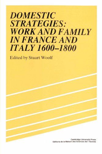 9780521892339: Domestic Strategies: Work and Family in France and Italy, 1600-1800 (Studies in Modern Capitalism)