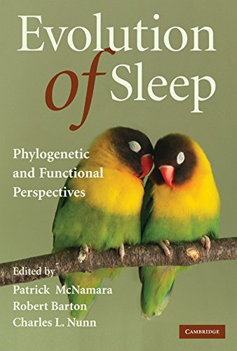9780521894975: Evolution of Sleep: Phylogenetic and Functional Perspectives