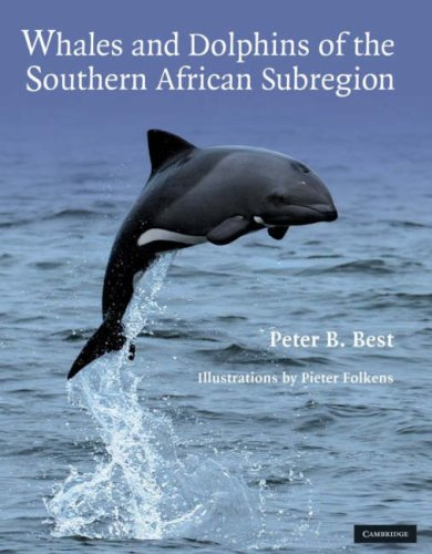 Whales and Dolphins of the Southern African Subregion (Hardcover): Peter B. Best