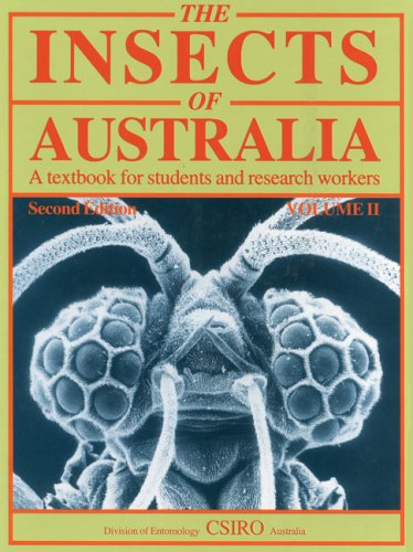 9780522846386: Insects of Australia, Volume 2: A Textbook for Students and Research Workers