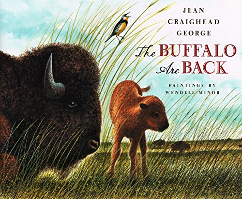 Buffalo are Back