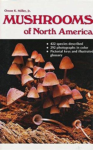 9780525483175: Mushrooms of North America