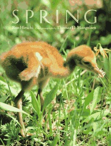 9780525650379: Spring