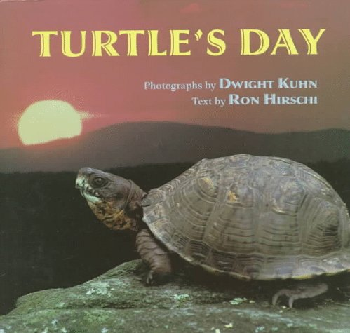 9780525651727: Turtle's Day
