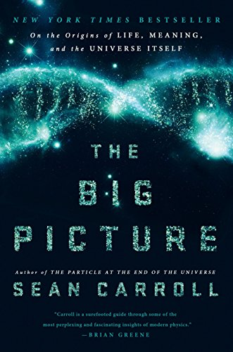 9780525954828: The Big Picture: On the Origins of Life, Meaning, and the Universe Itself