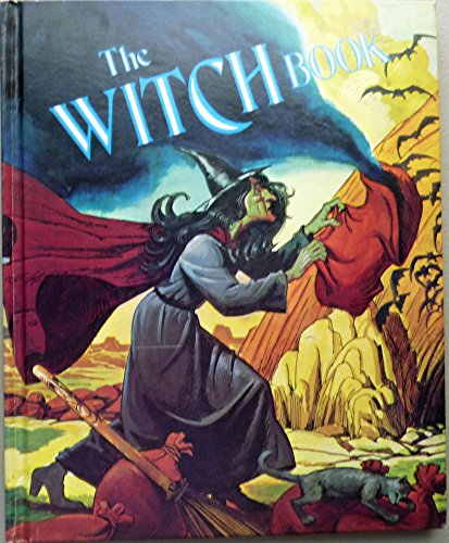 9780528820076: Witch Book