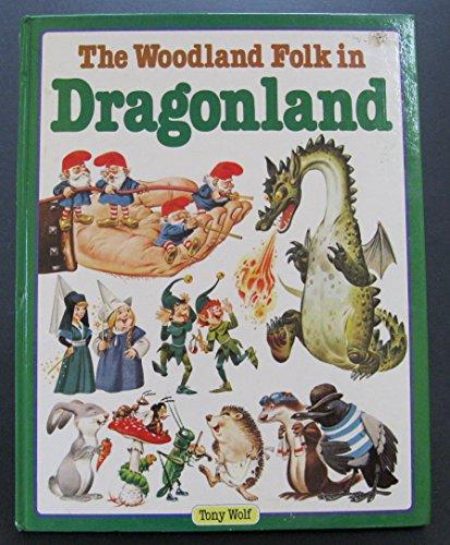 9780528825668: The Woodland Folk in Dragonland