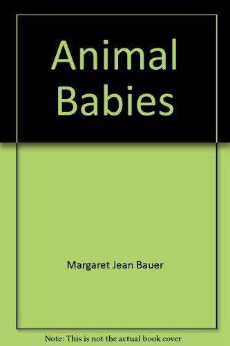 9780528885099: Animal Babies