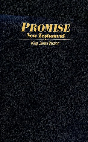 9780529104571: KJV Personal Promise New Testament