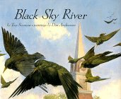9780531095379: Black Sky River