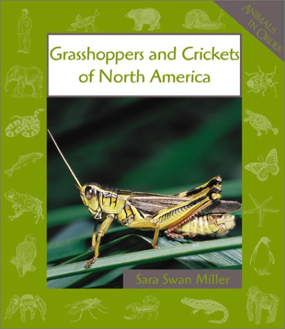 9780531121702: Grasshoppers and Crickets of North America (Animals in Order)