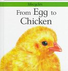 From Egg to Chicken (Lifecycles): Legg, Gerald; Salariya, David