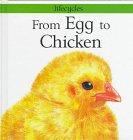 From Egg to Chicken (Lifecycles): Legg, Gerald; Salariya, David