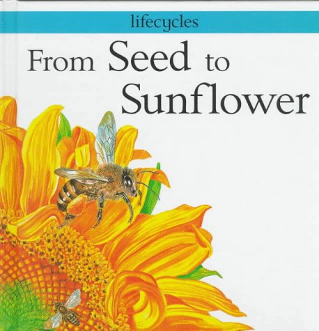 9780531144923: From Seed to Sunflower (Lifecycles)